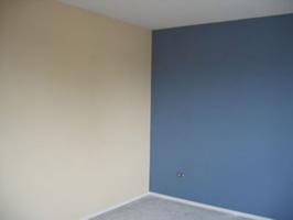 Как красить стены валиком: видео-инструкция по окраске своими руками, как выбрать, каким лучше, цена, фото