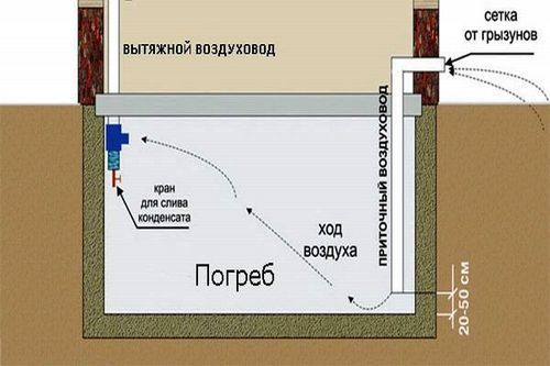 Погреб под домом своими руками - строительство, инструкции!