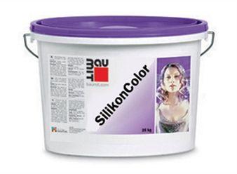 Покраска погреба внутри своими руками: видео-инструкция, чем покрасить стены, какой краской, фото и цена