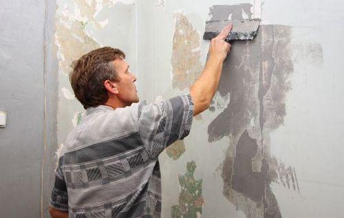 Силиконовая краска для внутренних работ: водоэмульсионные покрытия и другие, видео и фото