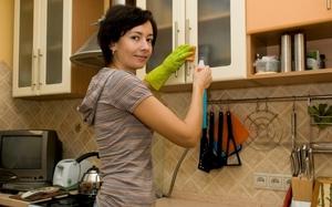 Как и чем уничтожить пищевую моль на кухне: проверенные способы