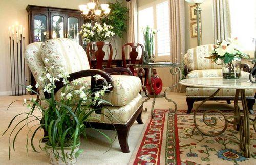 Комнатные цветы в интерьере квартиры