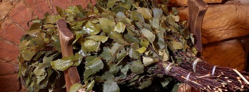 Как правильно сушить березовые веники для бани
