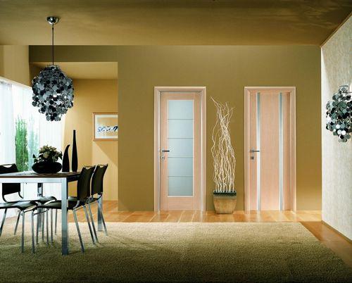 Виды дверей: межкомнатные какие бывают, материалы и типы, из чего состоят варианты, разновидности и различия