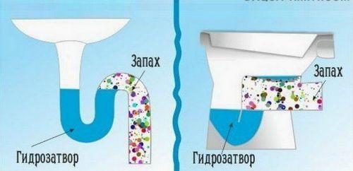 Запах из канализации – откуда взялся и что делать